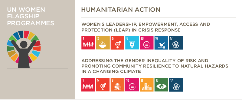Humanitarian Action and the flagship programme initiatives