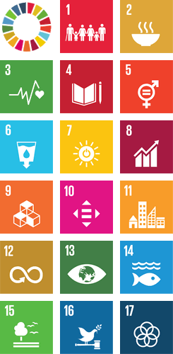 Sustainable Development Goals (SDGs)