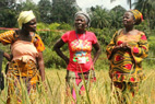 Bendu Jah (middle), President of the Gbarpolu Rural Women's Structure, invested her loan in a 52-plot rice farm but says the Ebola crisis is affecting profits. Photo: UN Women/Winston Daryoue