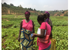 "UN Women launches the ""Buy From Women"" Innovative Platform in Rwanda"