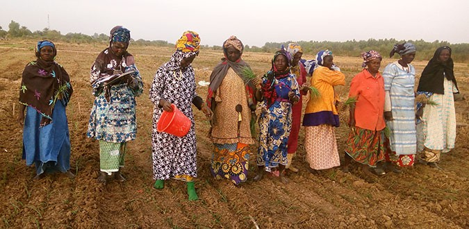 Members of the women's cooperative use climate-resilient organic compost and biopesticides in their farm. Photo: UN Women