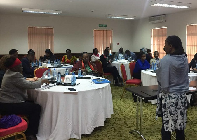 Participants engage during at the PDNA training. Photo: UN Women/ Amanda Nasinyama