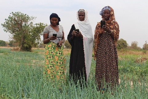 Climate-smart innovations improves agriculture and livelihoods of rural women in Mali