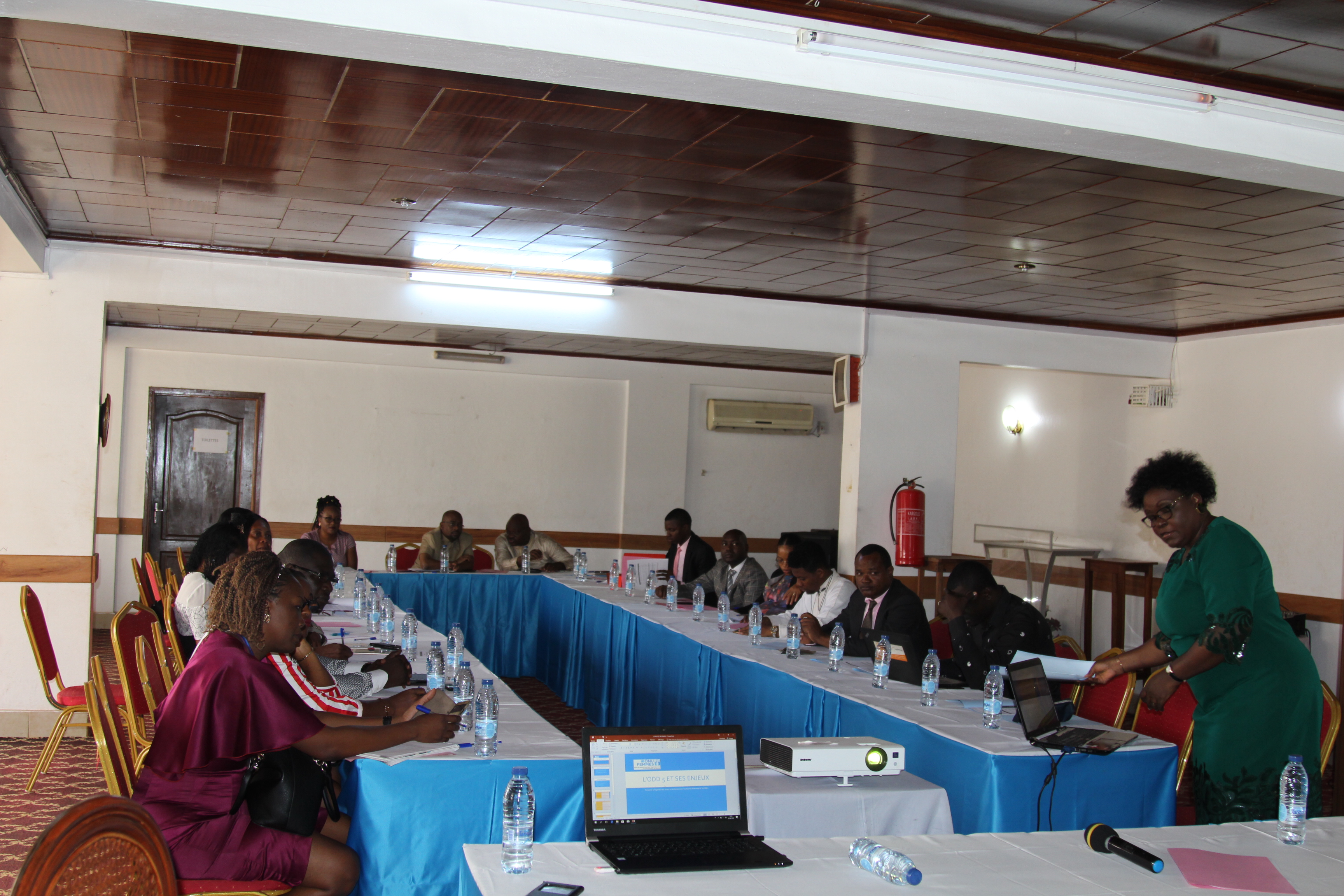 UN Women promotes the generation and use of gender statistics in Cameroon