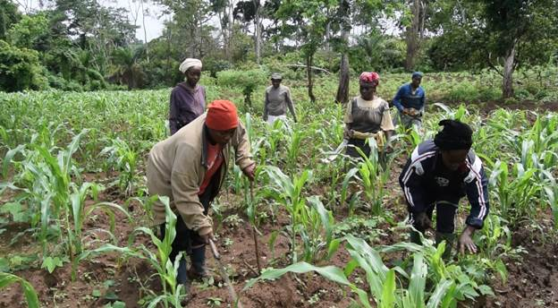 Empowering rural women on effective management of cooperatives and development organizations