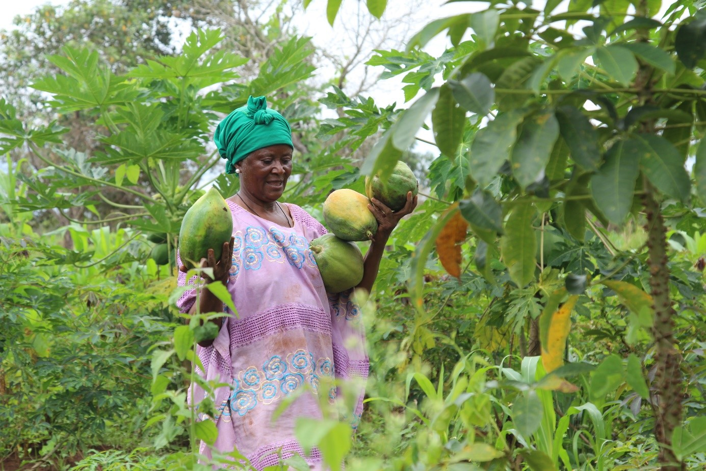 UN Women at the forefront of Economic Empowerment for Rural Women