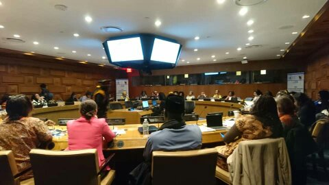 A view of participants during the Side event.
