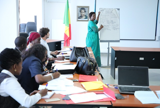 """Marie Sabara, EVAW Program Officer presents the """"Improving access to legal aid for women"""" project in front of representatives from sister UN agencies, civil society and Government."""