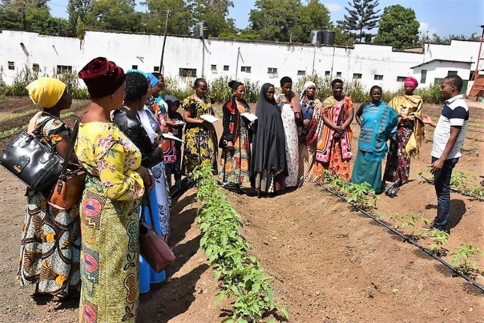 During a training on how to use drip irrigation in Singida, Mariamu Rasidi was one of the women who was trained on climate-smart techniques to grow sunflowers using drip irrigation. Since the launch of the programme, UN Women has trained 766 women sunflower farmers to improve their production in the Shinyanga and Singida regions. Photo: UN Women.