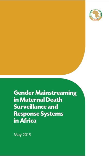 Gender Mainstreaming in Maternal Death Surveillance and Response Systems in Africa cover