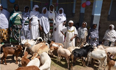 Some of the group members with the goats and sheep they purchased for income generating using the 3,000 Birr loan that each received