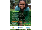 Engendering agricultural productivity in Ethiopia: The cost of the gender gap