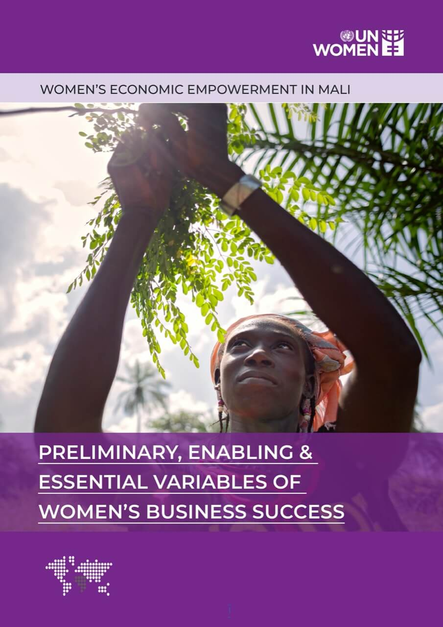 PRELIMINARY, ENABLING & ESSENTIAL VARIABLES OF WOMEN'S BUSINESS SUCCESS