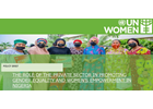 THE ROLE OF THE PRIVATE SECTOR IN PROMOTING GENDER EQUALITY AND WOMEN'S EMPOWERMENT IN NIGERIA