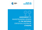 Assessment of mainstreaming gender in the national statistical system of Ethiopia
