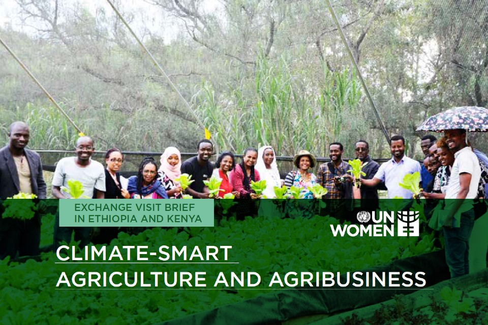 Climate Smart Agriculture and Agribusiness