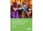 Rapid Assessment of the Situations of Women Migrating from, into and through Niger