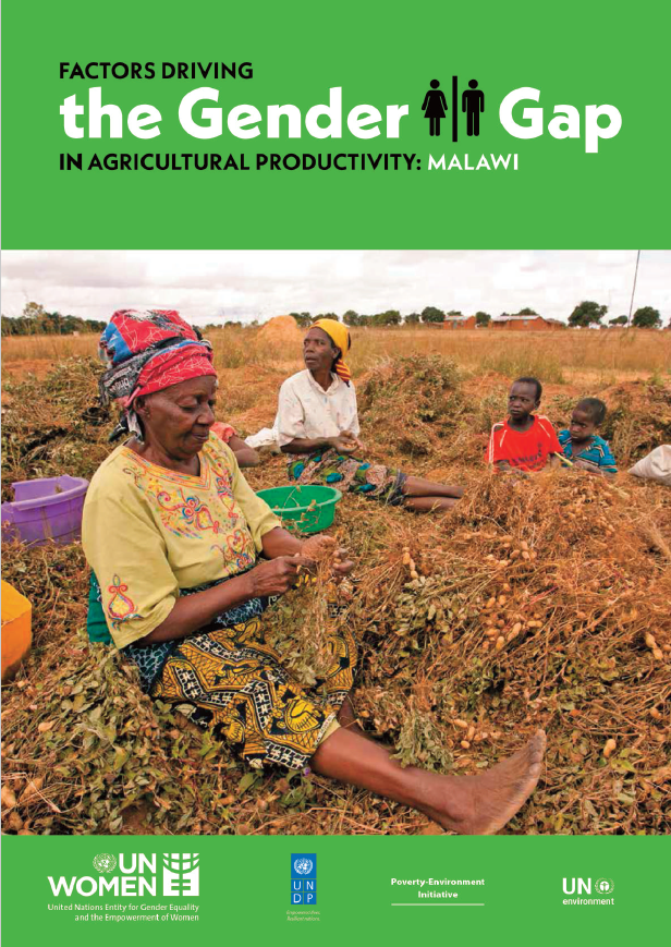 Factors driving the gender gap in agricultural productivity in Malawi