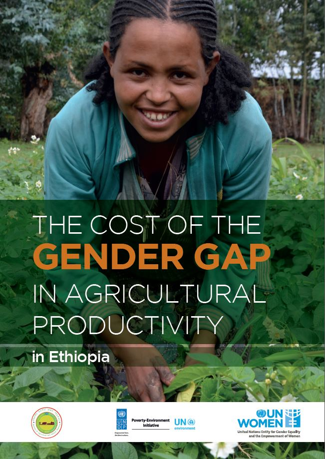 The cost of Gender Gap in agricultural productivity in Ethiopia