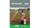 Cost of gender gap in Tanzania