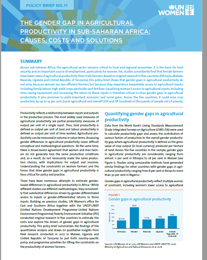 THE GENDER GAP IN AGRICULTURAL PRODUCTIVITY IN SUB-SAHARAN AFRICA: CAUSES, COSTS AND SOLUTIONS