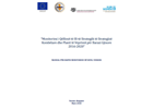 Manual - Monitoring of the Gender Equality Strategy