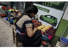 The Economic Impact of COVID-19 on Women in Latin America and the Caribbean