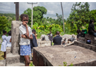 Your questions answered: Women in Haiti
