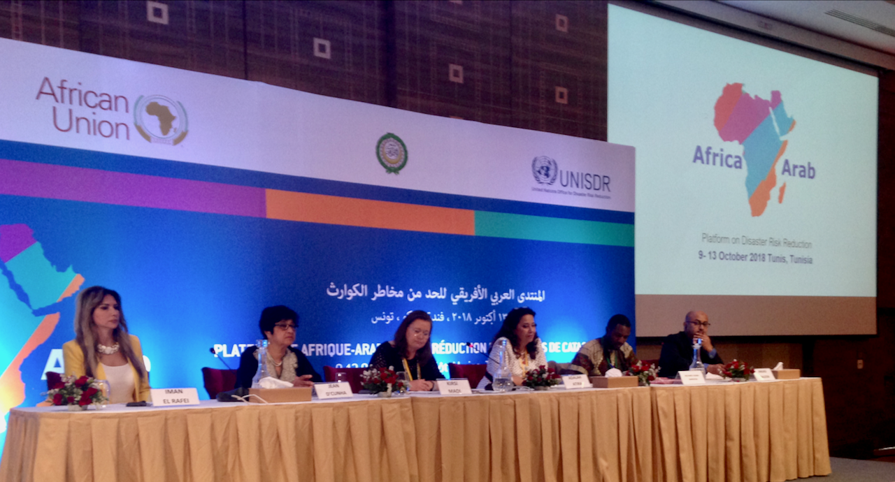 UN Women highlights gender dimension in the first ever Africa-Arab Platform on Disaster Risk Reduction