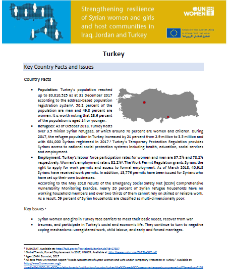 Turkey Madad Factsheet