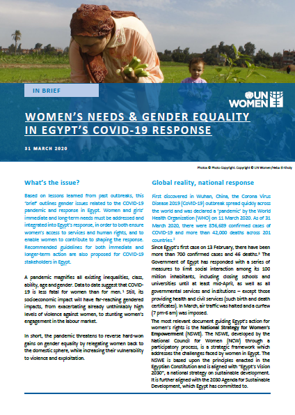 Women's Needs and Gender Equality in Egypt's COVID-19 Response