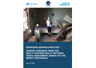 Emerging Gender Analysis: Gender Findings from the Multi-Partner Multi-Sectoral Needs Assessment (MSNA) of the Beirut Explosion