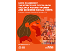 Rapid Assessment: The Effects of COVID-19 on Violence Against Women and Gendered Social Norms - A Snapshot from Nine Countries in the Arab States Preliminary