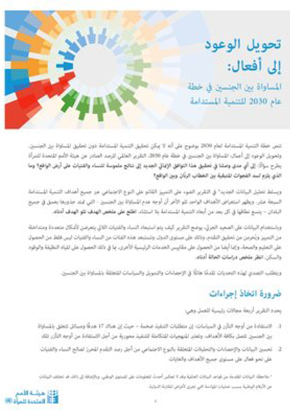 SDG report Factsheet Global Arabic