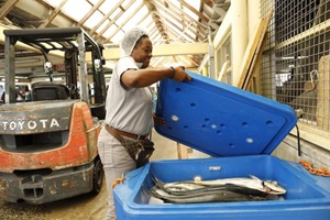 Agri-Fisheries Small Business Sectors