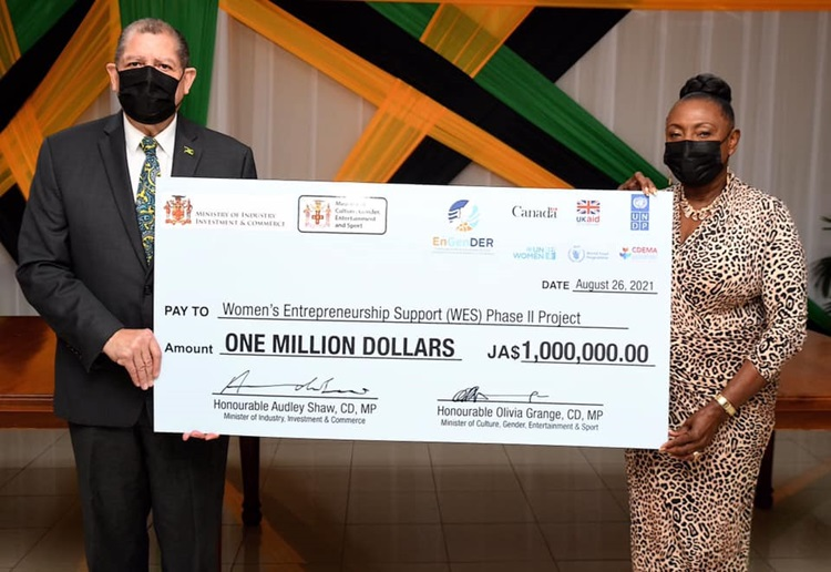 Check presentation by Ministers