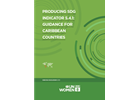 Producing SDG Indicator 5.4.1: Guidance For Caribbean Countries
