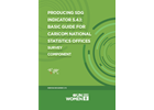 Producing SDG Indicator 5.4.1: Basic Guide for CARICOM National Statistics Offices