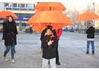 Bosnia and Herzegovina takes a strong step forward to protect women survivors of violence