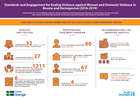Standards and engagement for ending violence against women and domestic violence in Bosnia and Herzegovina (2016-2019)