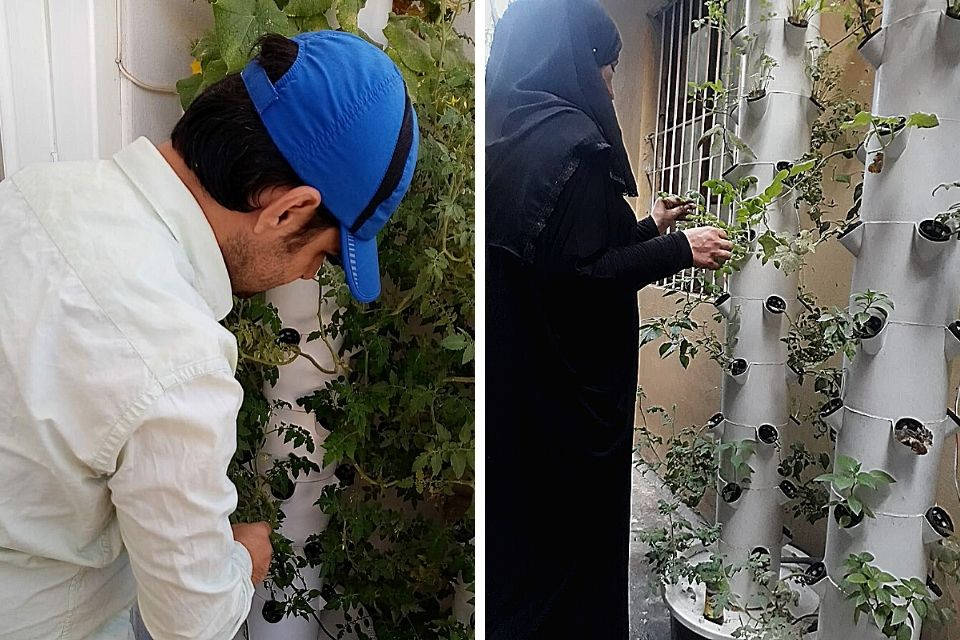 Emre Erhani and Fatena Khalil have been doing micro gardening and growing healthy and quality vegetables at home. Photo Credit: ASAM