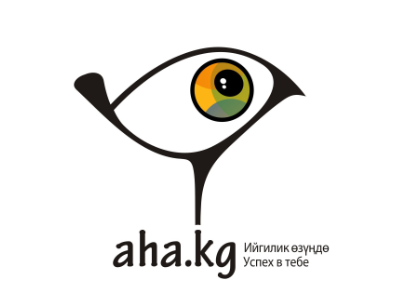 Aha.Kg provides personal development and soft skills learning in Kyrgyz language.
