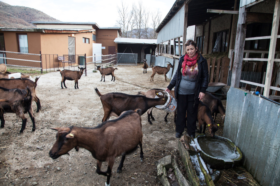 Goat cheese farmer and business owner Vidinka Markovic in Srbovac village of Kosovo (under UNSCR 1244) Photo: UN Women Europe and Central Asia/Rena Effendi