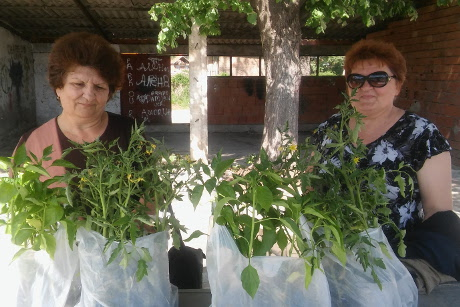 Rural women in Svrljig with their new seedlings from the organic food production training, organized by local Women's Councillors' Network. Photo: UN Women/Jelena Sekulic