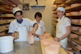 Tajik crew producing Swiss hard cheese, semi-hard cheese 'Mutschli' and curd together with Maike Oestreich in the village dairy of Präz. Photo: UN Women/ Zarina Urakova