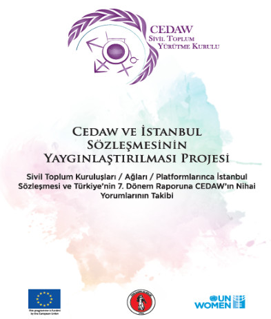 Guidebook on CEDAW and Istanbul Convention
