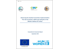 Advancing the Istanbul Convention implementation: The role of women's NGOs and networks in the Western Balkans and Turkey