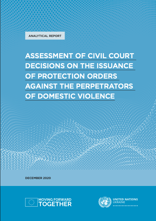 Assessment of civil court decisions on the issuance of protection orders cover page