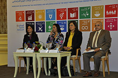Workshop on Supporting the Monitoring and Implementation of the SDGs through Better Production and Use of Gender Statistics