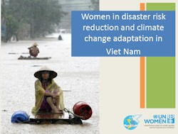 Women and natural disasters in Viet Nam